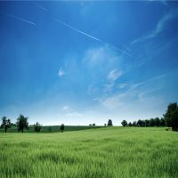 agriculture-bright-clouds-2